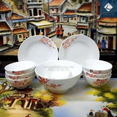 Bộ đồ ăn Hoa Đào Tết 10 món